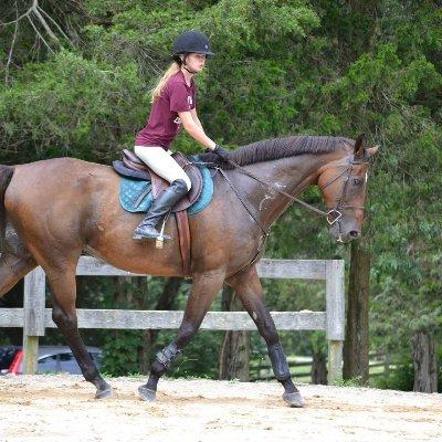 The 10 Best Horseback Riding Lessons Near Me 2019