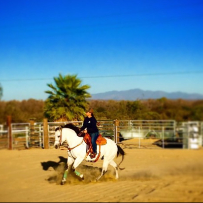 San diego beach rides horse rentals wagon rides at pony for Where to go horseback riding near me