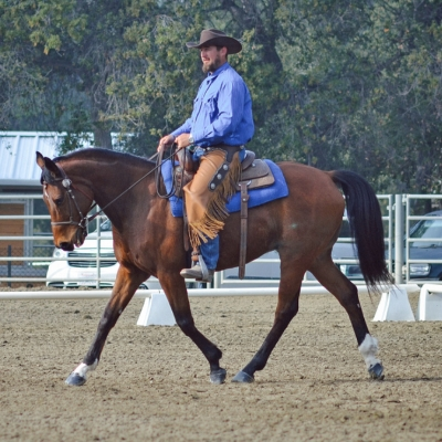 N star farms in los angeles ca for Where to go horseback riding near me